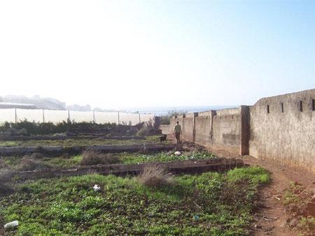 Mauer am Bollulo Strand