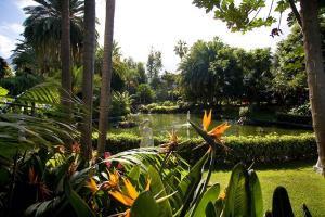 Der Botanische Garten im Hotel