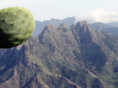Landschaft Anaga Gebirge