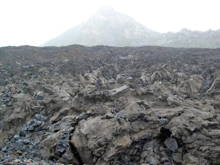 Lava Negra in der Cañadas