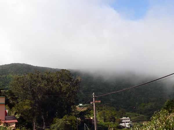 Nebel-Wolken Mercedeswald