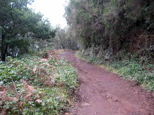 Wanderweg Mercedeswald
