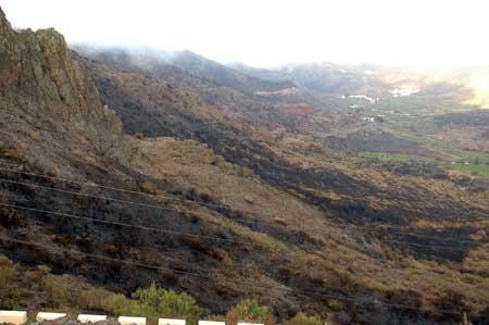 Verbrannte Landschaft auf Teneriffa