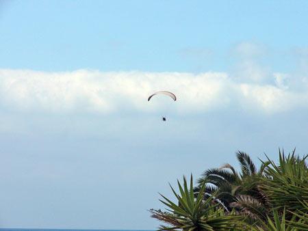 Paragliding in Puerto de la Cruz