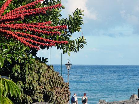 Spaziergang am Playa Jardin