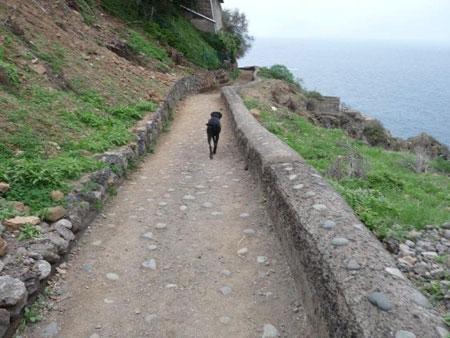Wanderweg Rambla de Castro entlang der Küste