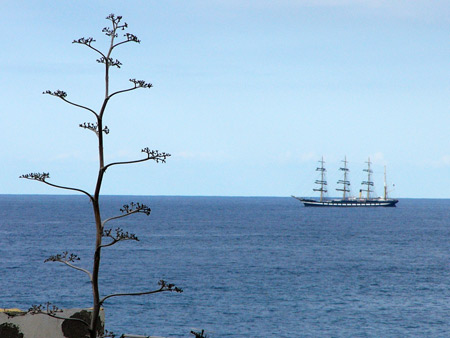 Segelschiff Krusenstern im Meer vor Teneriffa