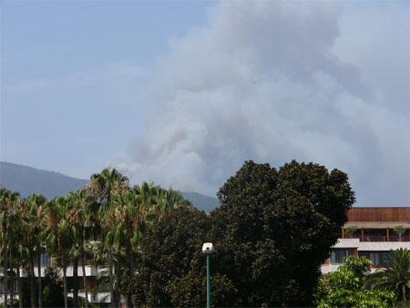 Feuer auf Teneriffa