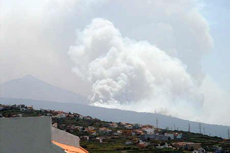 Waldbrand am Teide