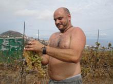 Carlos bei der Weinernte
