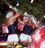 Karneval 2007 Santa Cruz deTenerife