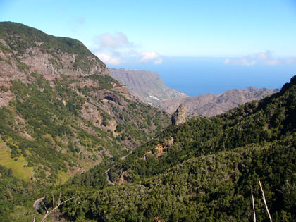 Auf den Berge - Parque National de Garajonay