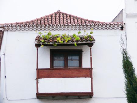 La Guancha, Teneriffa