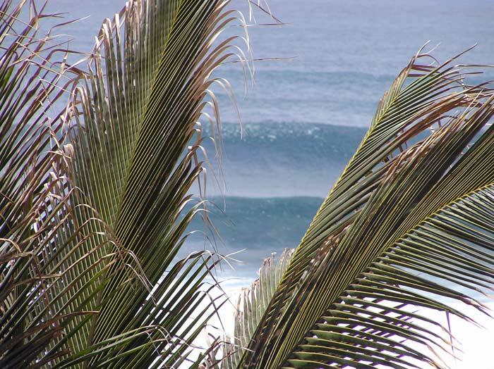 Wellen Puerto de la Cruz - Teneriffa