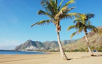 Pauschalreisen Santa Cruz de Tenerife