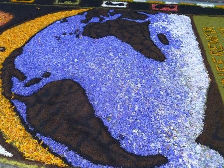 Blumenteppich Afrika-Europa