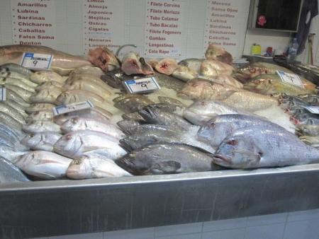 Auswahl Fische