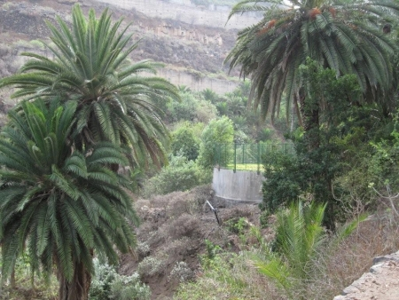 Barranco Wasserbecken