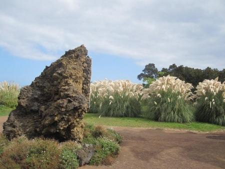 Eingang Playa Jardin