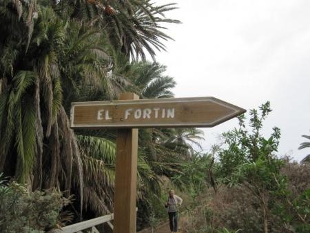 El Fortin