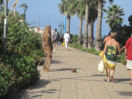 Guanche Playa Jardin