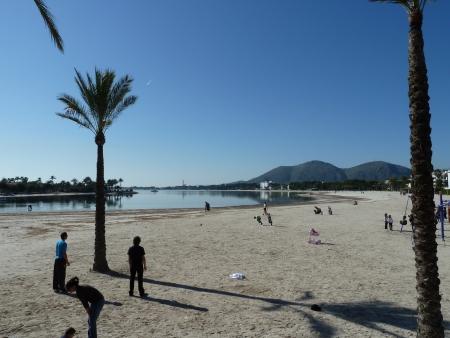 Strand in Alcudia auf Mallorca